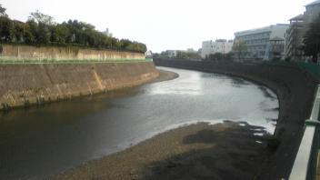 川幅が広くなってきました